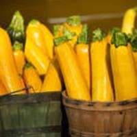 Yellow Squash Casserole #2 Recipe