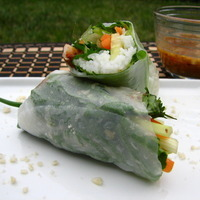 Fresh Shrimp Spring Rolls Recipe