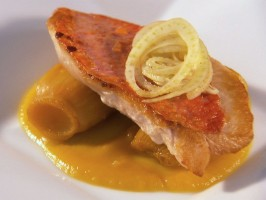 Braised Fennel and Line-Caught Lagoon Fish