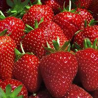 Strawberry Chicken with Feta Recipe