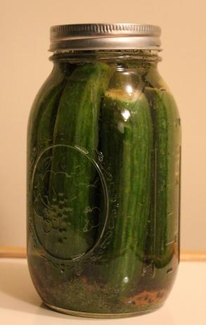 Kosher Jewish Pickles