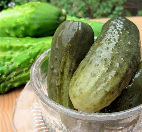 Sunshine Dill Pickles