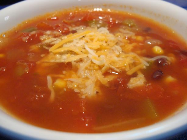 Spicy Southwestern Vegetable Soup