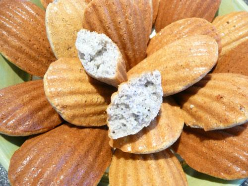 Blue Corn Madelines