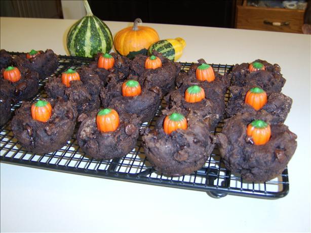 Fat Free Chocolate Muffins