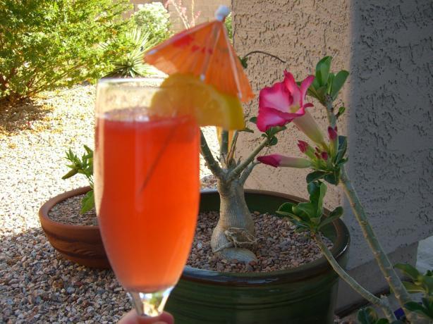 Due Campari Cocktail