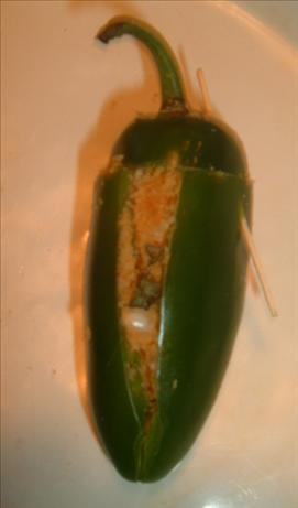 Franken-Peppers (Chili-Crumb Stuffed Jalapenos)