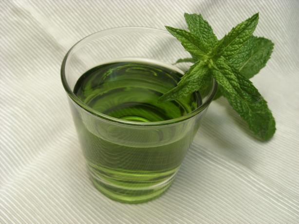 Peppermint Liqueur