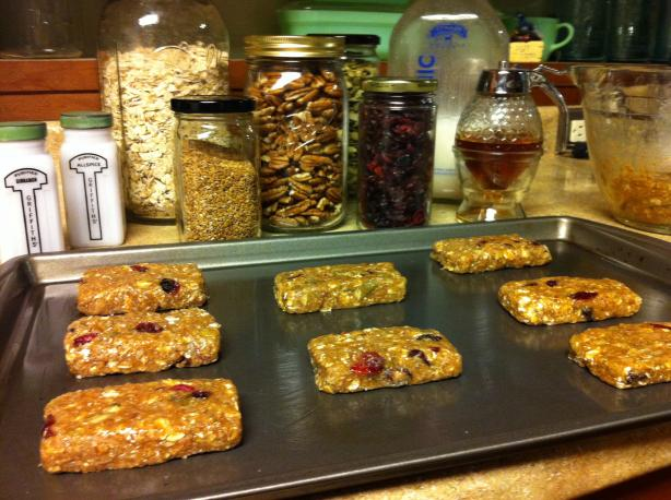 Homemade Organic Protein Bars