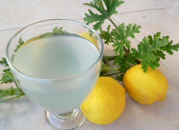 Rose Scented Geranium Lemonade