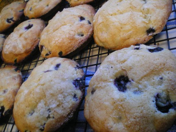 Jordan Marsh Famous Blueberry Muffins