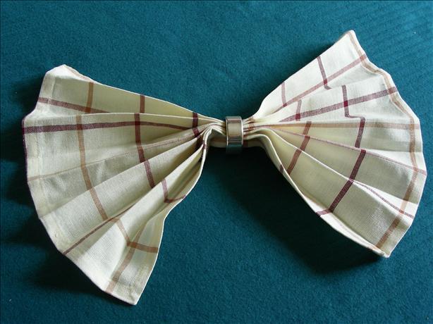 Serviette/Napkin Folding, Simple Fan