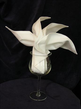 Serviette/Napkin Folding, Sydney Opera Fan in Wine Glass