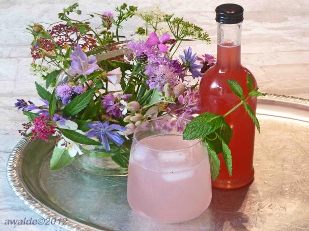 Persian Rhubarb Syrup