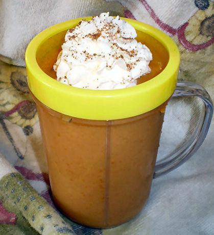 Pumpkin Pie Smoothie (Ibs Safe)