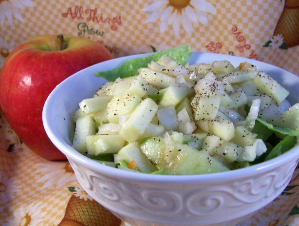 Appel Salade - Apple Salad