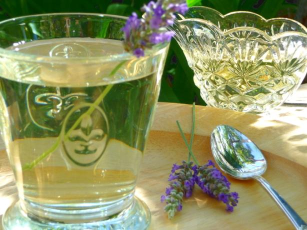Provence Lavender Cordial-Syrup