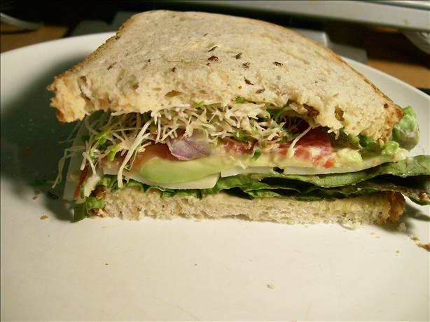 Tomato, Cheese, and Avocado Sandwich