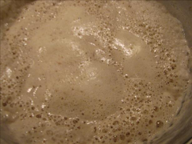 Sourdough Starter from Flakes