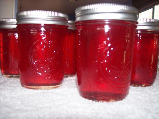 Pomegranate Wine Jelly