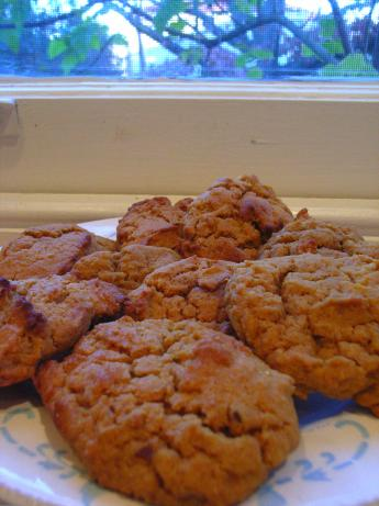 South African Ginger Cookies