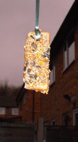 Treat the Birdies! Bird Feeder - Kids Can Make