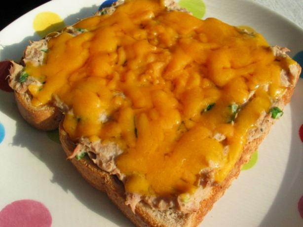 The Best Spicy Tuna Melt