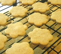 Cinnamon Orange Cream Cheese Cookies