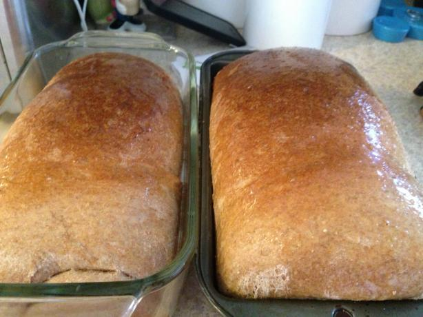 Fresh Milled Grain Whole Wheat Bread in Bread Machine
