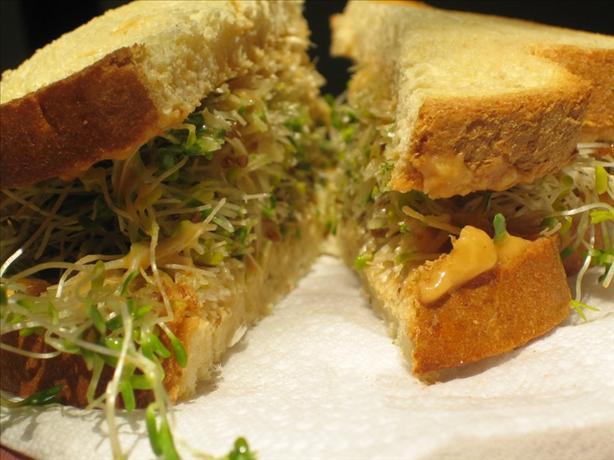 Sprouts & Hummus Sandwich