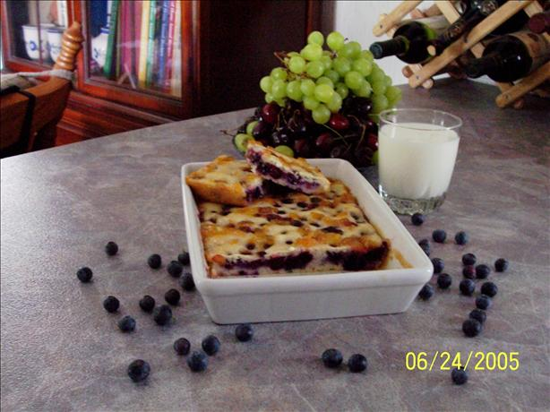 Low Fat Sugarless Blueberry Squares