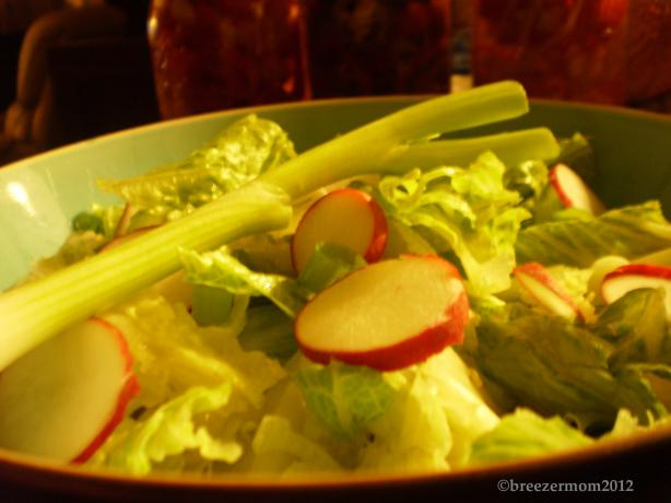 Salad With Radish and Green Onions
