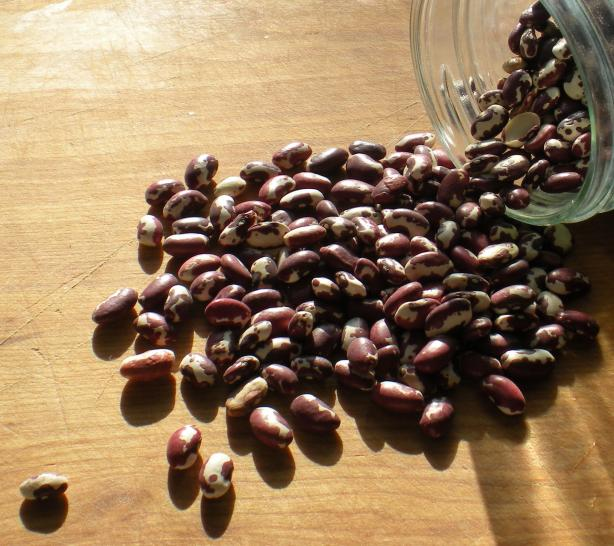 How to Make a Simple Pot of Anasazi Beans