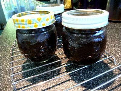 Lekvar Prune Plum Filling or (Apricot)