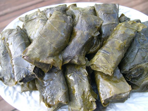 Elaine's Dolmathes (Stuffed Grape Leaves)