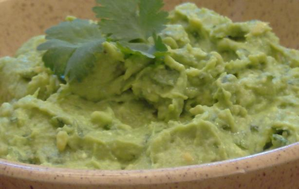 Avocado - Cilantro Spread