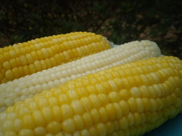 Corn on the Cob; Stays Hot and Fresh