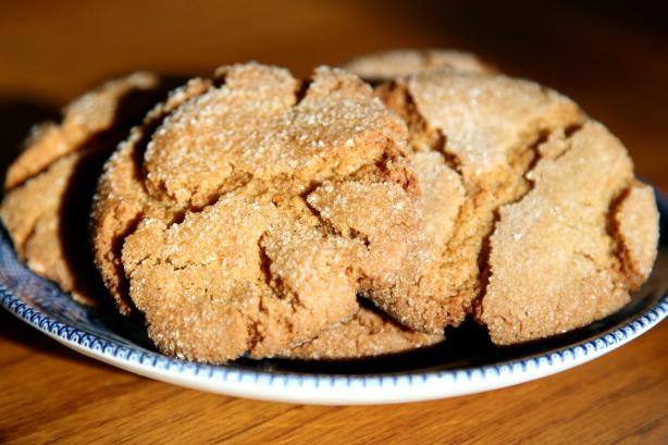 Silver Dollar City's Famous Ginger Cookie