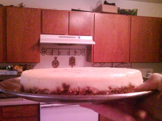 Alton Brown's Sour Cream Cheesecake