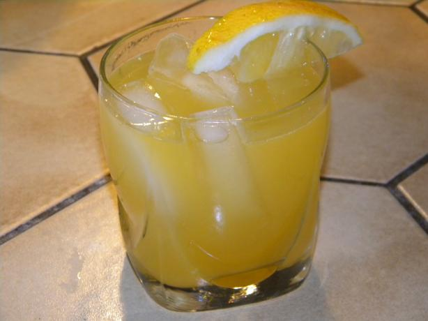 Fresh Navel Orange and Vodka Cocktail : Refreshing!
