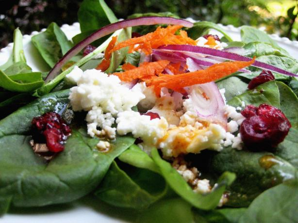 Feta and Red Onion Spinach Salad