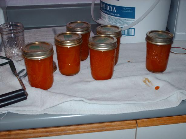 Apricot Almond Cinnamon Jam