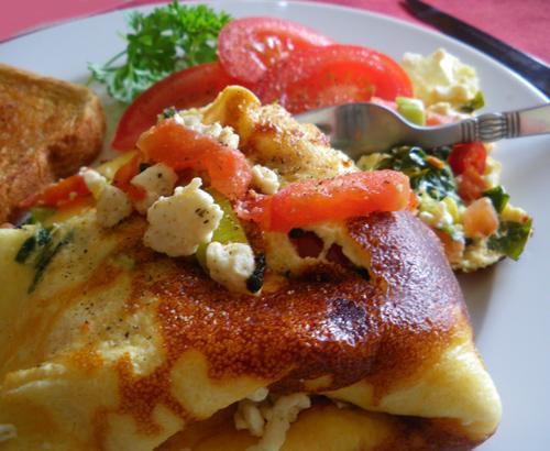 Farm-Fresh Omelet
