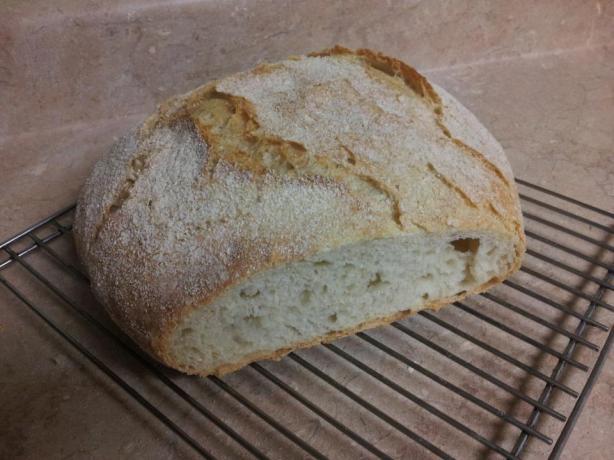 Easy No Knead Dutch Oven Crusty Bread