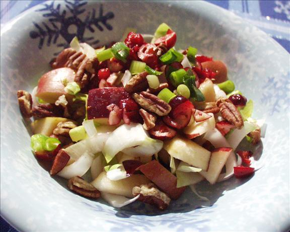Belgian Endive and Apple Salad With Cranberry Vinaigrette