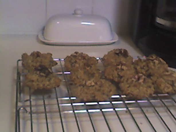 Healthy but Tasty Chocolate Chip Oatmeal Cookies