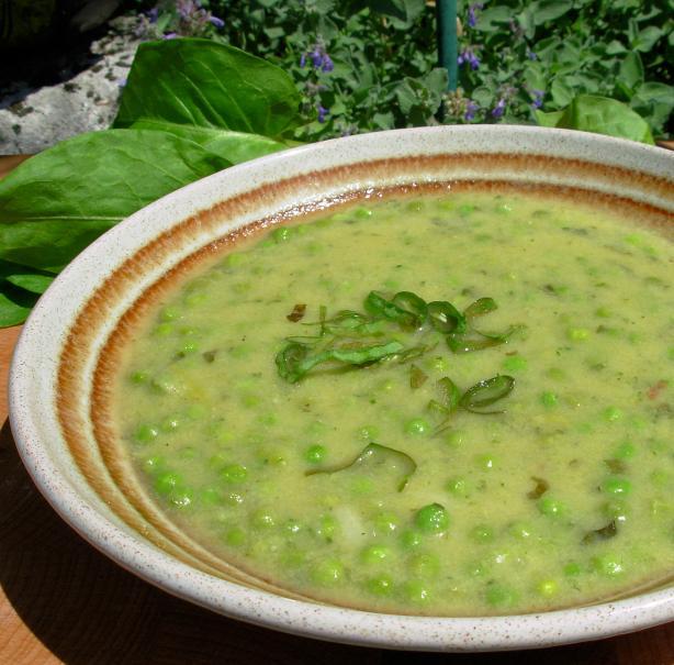 Soupe a L'oseille Et Aux Petits Pois - Sorrel and Pea Soup