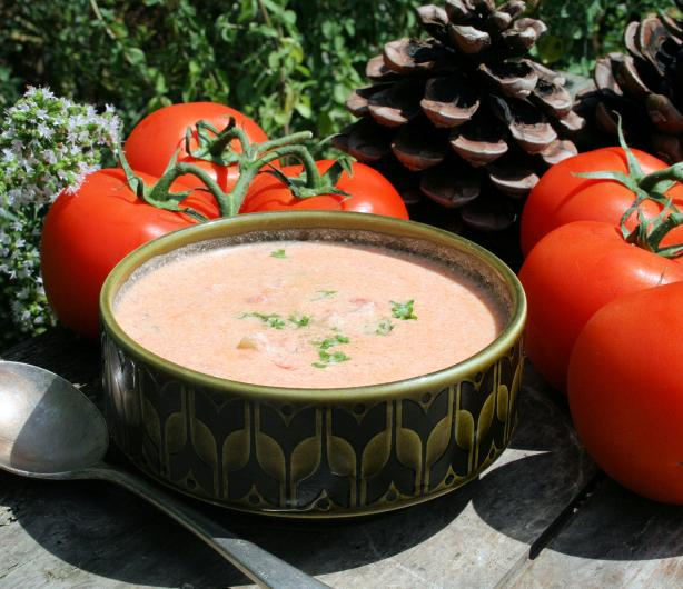 Tomato/Dill Cream Cheese Soup