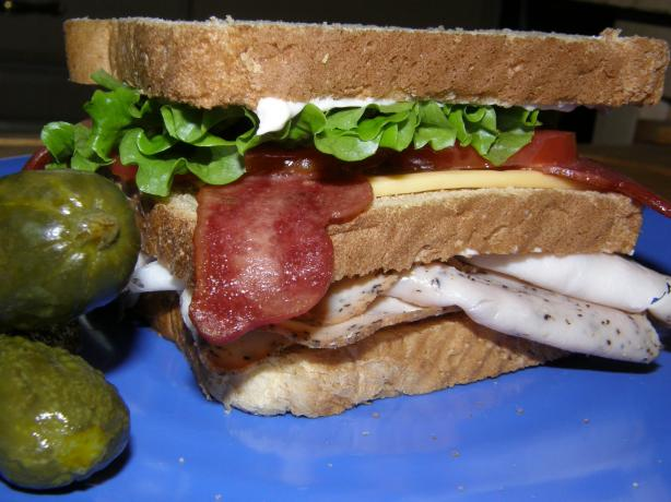 Turkey Turkey Turkey Club on Whole Wheat