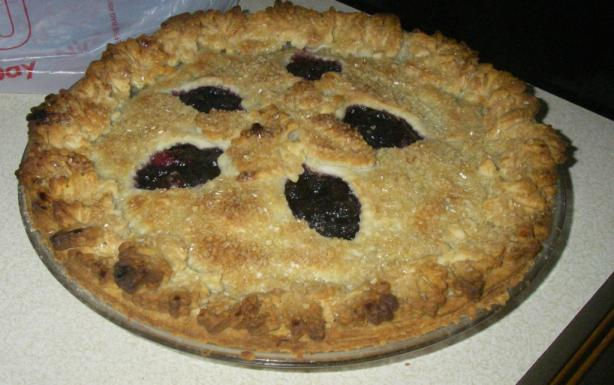 Double Crusted Blueberry Cranberry Pie